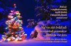 Božično-novoletno voščilo