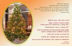 Božično-novoletno voščilo ravnateljice šole
